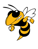 Buzz is a registered trade mark of Georgia Tech